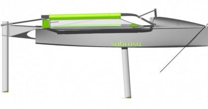 Moth sabrosa render 3D